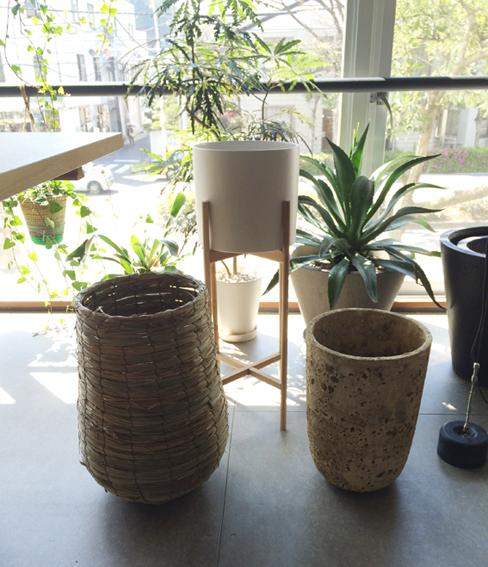 素敵な植木鉢
