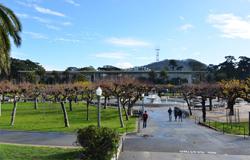 カリフォルニア科学アカデミー