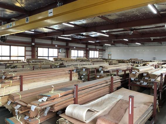 突き板工場見学